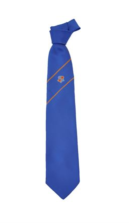 Picture of Loreto College 6th Form Tie - Michael George