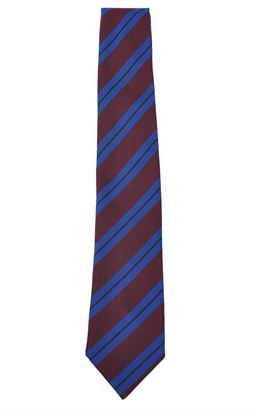 Picture of Dalriada School Tie - Unicol