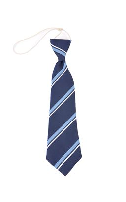 Picture of Ballymoney Model CIPS Elastic Tie - Unicol