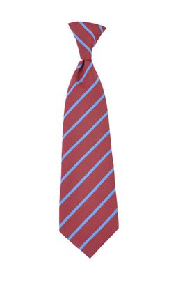 Picture of Damhead PS Elastic Tie - Unicol