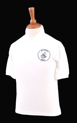 Picture of Ballymoney Model CIPS Polo Shirt - Blue Max