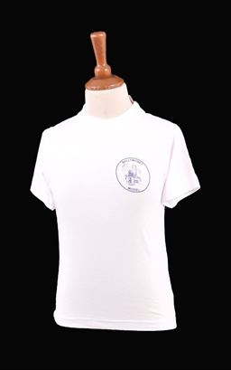 Picture of Ballymoney Model CIPS PE T-Shirt - Blue Max