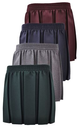 Picture of Pleated All Around Skirt - SSS Manchester