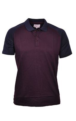 Picture of Mish Mash Polo Shirt Atlantis 2961AT