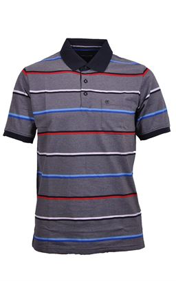 Picture of Casamoda Polo Shirt 9033389
