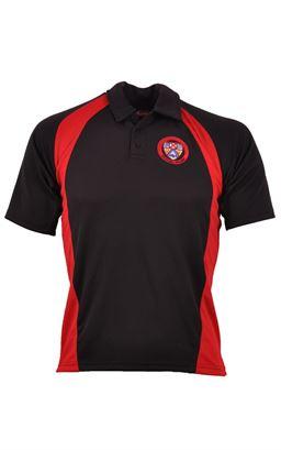 Picture of Coleraine College Boys Polo Shirt - Akoa