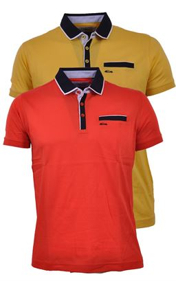 Picture of Dario Beltran Polo Shirt 2290
