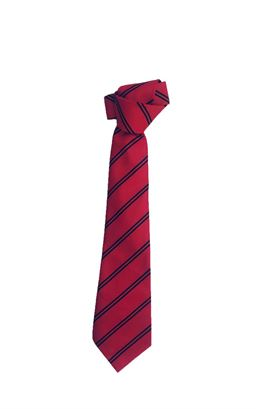 Picture of Coleraine College Tie - Unicol