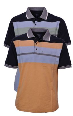 Picture of Daniel Grahame Polo Shirt Drifter 55123