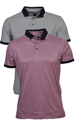 Picture of Remus Polo Shirt  58725