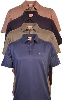 Picture of Gabicci Polo Shirt GOOZ05