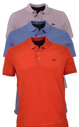 Picture of Surfcar Polo Shirt 201101
